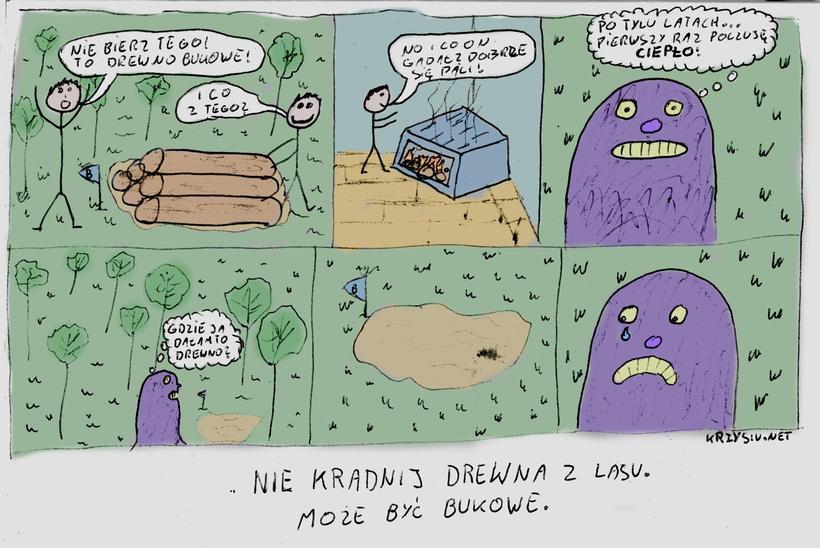 Nie kradnij drzewa z lasu – komiks