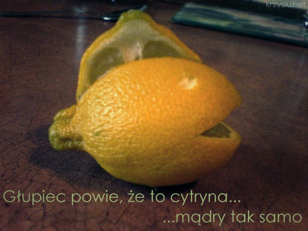 głupiec powie, że to cytryna... / ...mądry tak samo