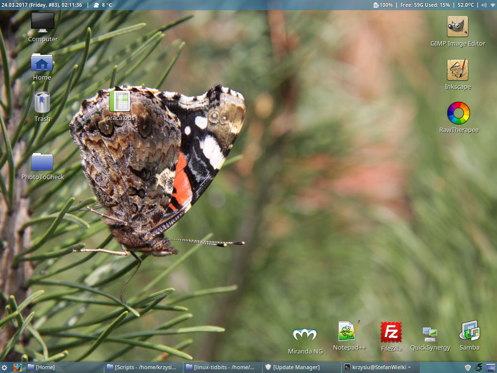 Linux mint desktop with two bars